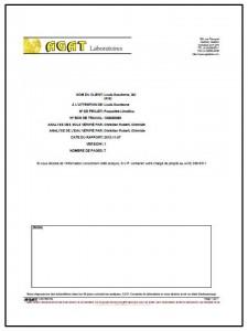 Rapport d'analyse 17 novembre 2012